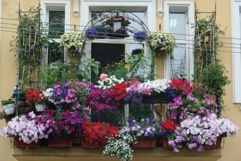 В Санкт-Петербурге состоится ставший уже традиционным конкурс «Лучший балкон»