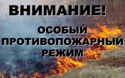 В Санкт-Петербурге установлен особый противопожарный режим